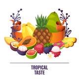 Fruits vector pattern fruity apple banana and exotic papaya background fresh slices of tropical dragonfruit juicy orange. Illustration fruitful backdrop stock illustration