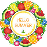 Fruits vector round frame. Vector elements. Watermelon, cherry, raspberry, blueberry, strawberry, orange, lemon, and lime Stock Image