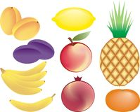 Fruits vector set Stock Images