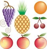 Fruits vector set Royalty Free Stock Photo