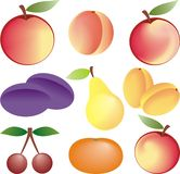 Fruits vector set Royalty Free Stock Photography
