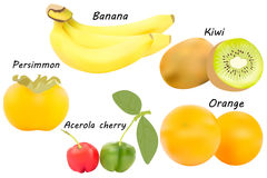Fruits vector set Stock Photo