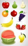 Fruits Vectors Stock Images