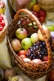 Fruits and vegetables Royalty Free Stock Image