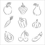 Fruits and Vegetables. Set of  sketches Fruits and Vegetables Stock Image