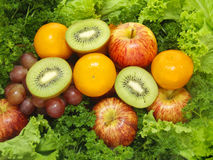 Fruits and Vegetables. Collection of Fresh Fruits with Vegetables background. Good for diet program royalty free stock photos