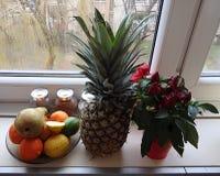 fruits vegetables στοκ εικόνες με δικαίωμα ελεύθερης χρήσης