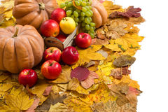 Fruits and vegetables on autumn leaves Royalty Free Stock Images