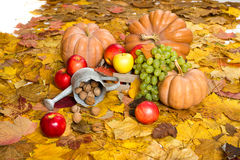 Fruits and vegetables on autumn leaves Royalty Free Stock Photo
