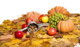 Fruits and vegetables on autumn leaves Royalty Free Stock Image