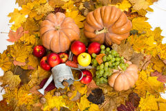 Fruits and vegetables on autumn leaves Stock Images