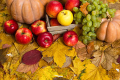 Fruits and vegetables on autumn leaves Royalty Free Stock Photos