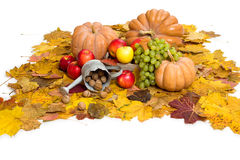 Fruits and vegetables on autumn leaves Stock Photo