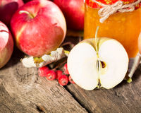 Fruits and vegetables in autumn Royalty Free Stock Photography