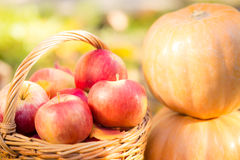 Fruits and vegetables in autumn Royalty Free Stock Photo
