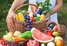 Fruits and vegetables in the basket. Summer fruit and vegetables with a woman holding the basket Stock Photography