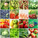 Fruits, vegetables, berries Royalty Free Stock Photography