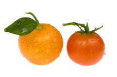 Fruits and vegetables. calamondin and tomato. Orange fruit and red tomato on white Stock Photos