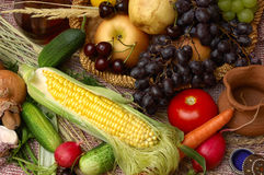 Fruits, vegetables and corn Stock Photography