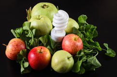 Fruits and vegetables are food for energy Stock Image