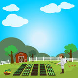 Fruits and vegetables garden. Vector illustration Royalty Free Stock Photography