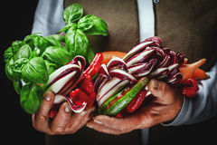 Fruits and vegetables in hands. Vegetables and fresh fruit, grown and harvested in the countryside in a hands Stock Photography