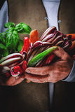 Fruits and vegetables in hands Stock Photo