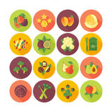 Fruits and vegetables  icons collection. Royalty Free Stock Photography