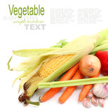 Fruits and Vegetables and ingredients Stock Images