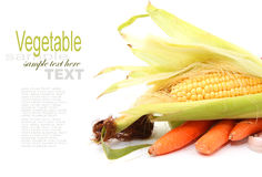Fruits and Vegetables and ingredients Stock Image