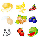 Fruits and vegetables. Organic food icons vector illustration Royalty Free Stock Photo