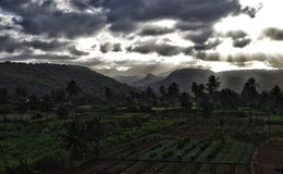 Fruits and vegetables plantations on Cape Verde Stock Image