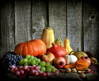 Fruits and vegetables with pumpkins Royalty Free Stock Images