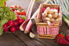 Fruits and vegetables of the season Royalty Free Stock Images
