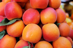 Fruits and vegetables in season organic products Stock Photography
