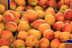 Fruits and vegetables in season organic products Royalty Free Stock Images