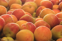 Fruits and vegetables in season organic products Stock Photos