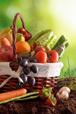 Fruits and vegetables on soil and green background vertical Royalty Free Stock Photos