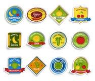 Fruits vegetables stickers set color Stock Image