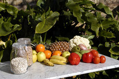 Fruits and vegetables in the sun, food Royalty Free Stock Photos