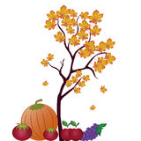 Fruits and vegetables for thanksgiving day Stock Photos