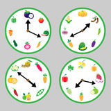Fruits and vegetables time Stock Image