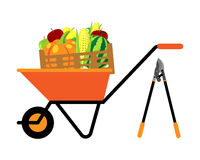 Fruits and vegetables in wheelbarrow vector illustration Stock Images