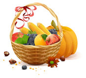 Fruits and vegetables in wicker basket. Rich harvest for Thanksgiving day Royalty Free Stock Photography
