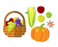 Fruits and vegetables in wicker basket vector illustration Stock Photos
