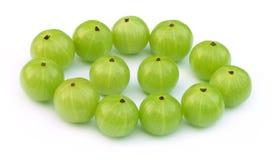 Fruits verts d'amla Photographie stock libre de droits