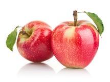 Fruits verts de pomme avec la lame Photographie stock libre de droits