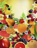 Fruits Wallpaper Royalty Free Stock Photo
