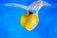 Fruits in water Stock Photography