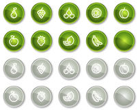 Fruits web icons, green and grey circle buttons. Vector web icons set. Easy to edit, scale and colorize Stock Photos